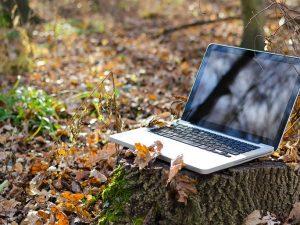 Internet rural: Qué alternativas tengo si vivo en un pueblo